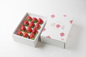 県産いちごの新ブランド「晴苺」 - 岡山県ホームページ(農産課)